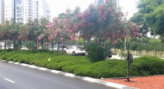 Apartment for sale Netanya